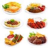 Plattor av olik kött och höna Fotografering för Bildbyråer