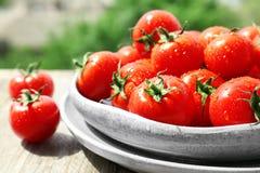 Plattor med nya mogna tomater Arkivbilder