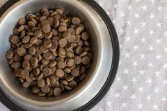 Plattor med torr mat för hund` s arkivfoto