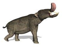 史前大象的platybelodon 库存图片