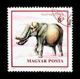 Platybelodon, Dinosaurs serie, circa 1990. MOSCOW, RUSSIA - NOVEMBER 24, 2017: A stamp printed in Hungary shows Platybelodon, Dinosaurs serie, circa 1990 Stock Images