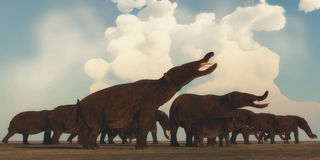 Platybelodon Herd. A Platybelodon herd gather on the plains of Africa to migrate to a better grazing area in the Miocene Era Stock Photo