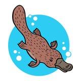 Platypus κινούμενων σχεδίων Στοκ Φωτογραφίες