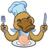 滑稽的愉快的动画片platypus或鸭嘴兽 免版税库存图片