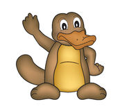 Platypus Stock Photo