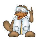 Platypus in lab coat. Illustration of a platypus in lab coat and goggles Royalty Free Stock Photo