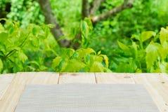 Platz für Gegenstand auf Holztisch mit grünem Sommer Stockfotografie