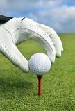 Platzieren des Golfballs auf ein T-Stück Lizenzfreie Stockbilder