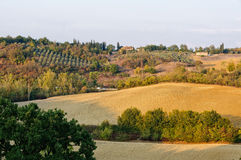 Plough 2 - Uopini. Autumn Tuscan countryside near Siena with farm houses, olive groves and arable land Royalty Free Stock Photos
