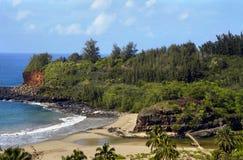 plaży allerton ogrodu Zdjęcie Royalty Free