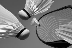 Play Badminton Stock Photo