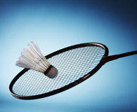 Play badminton. A Shuttlecock on badminton racket Stock Images