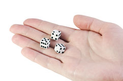 Play dice in the palm Royalty Free Stock Photo