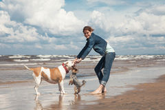 Play with dogs. Happy young woman walking with dogs Royalty Free Stock Photography