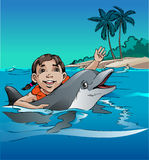Play with dolphins Royalty Free Stock Photo