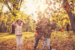 Play with fallen leaves. royalty free stock photos
