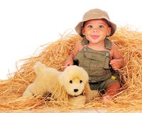 Play in the Hay Stock Image