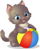 Play kitten Royalty Free Stock Photos