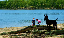 Play in the lake Royalty Free Stock Photos