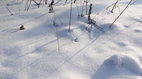 The texture of snow and shadows in the sun. Play of light and shadow of snow in the winter sun on a frosty winter day Royalty Free Stock Photography