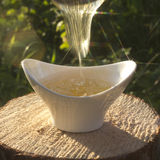 The play of light in stream of honey. Royalty Free Stock Photography
