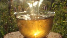 Play of light in stream of honey. stock video