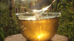 Play of light in stream of honey. stock video footage