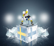 Play off game Sweden vs Finland Royalty Free Stock Photos