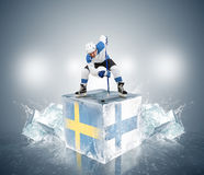 Play off game Sweden vs Finland ice Stock Photo