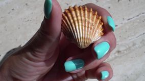 Play with a shell. Mint manicure stock footage
