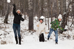 Play snowballs Stock Photography