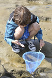 Play in tidepools Stock Photo