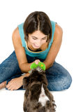 Play Time. Owner playing with their puppy royalty free stock image