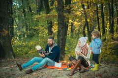 Play together. Mother father and small son play in park. Vacation and tourism concept. Happy family with kid boy. Relaxing while hiking in forest. Lovely couple royalty free stock photography