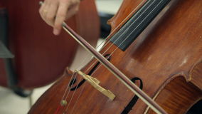 Play The Violin and Cello stock video footage