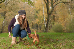 Play With The Dog Royalty Free Stock Photo