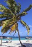 Playa埃斯梅拉达,奥尔金,古巴 免版税库存图片