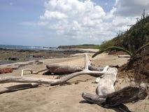 Playa布朗卡海滩哥斯达黎加 免版税库存照片
