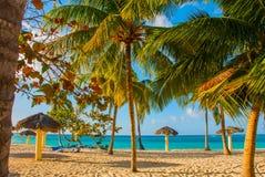 Playa埃斯梅拉达,奥尔金,古巴 加勒比海:一个热带白色沙子海滩的惊人的华美,惊人的看法和平静的turquoi 免版税库存图片