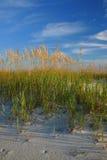 Playa 2 Foto de archivo libre de regalías