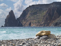 Playa. Imagenes de archivo