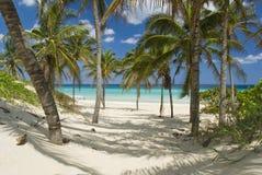 Playa Imágenes de archivo libres de regalías