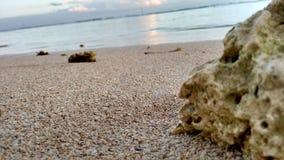 Playa Stock Afbeeldingen