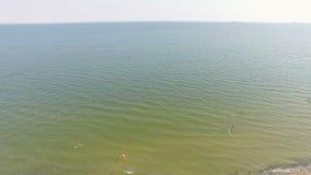 Playa aérea y gente que nadan en el agua metrajes