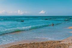 Playa, algas durante la bajamar y muchacho ideales Fotos de archivo