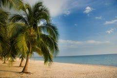 Playa alineada palmera, Playa Acone Fotos de archivo libres de regalías