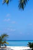 Playa arenosa blanca tropical con las palmeras maldives foto de archivo libre de regalías
