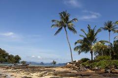 Playa arenosa hermosa con las palmeras y el cielo azul Krabi Tailandia foto de archivo