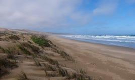Playa arenosa reservada y dunas herbosas en el rastro del ostrero, cerca de la bahía de Mossel, ruta del jardín, Suráfrica imágenes de archivo libres de regalías