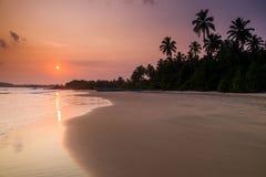 Playa arenosa tropical con las palmeras en la puesta del sol fotos de archivo